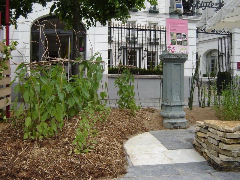 R alisations jardin ph m re de fontainebleau geoffroy - Paysagiste fontainebleau ...